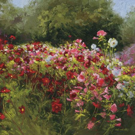 shirley-novak-cosmos-garden-ii