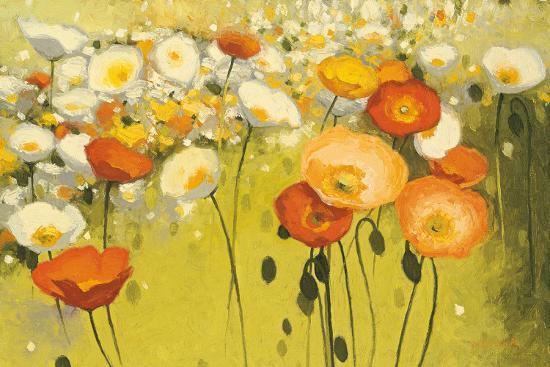 shirley-novak-spring-confetti