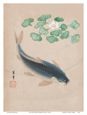 shisui-carp-with-water-flowers