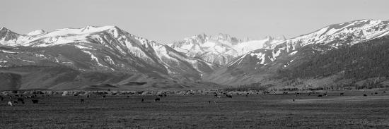 sierra-mountains-california
