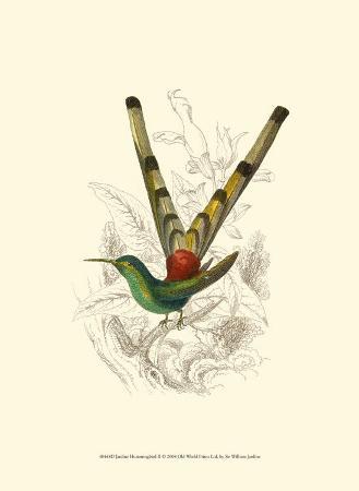 sir-william-jardine-jardine-hummingbird-ii