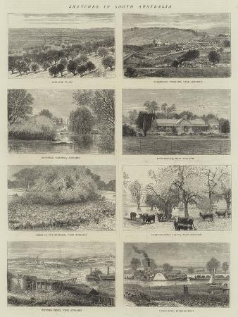 sketches-in-south-australia