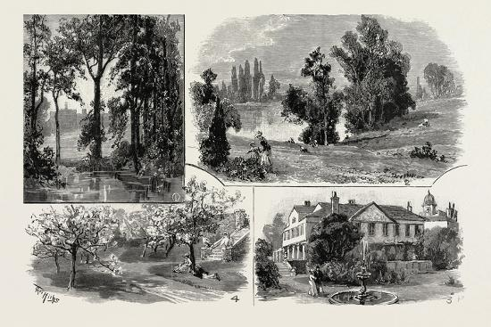 sketches-in-waterlow-park