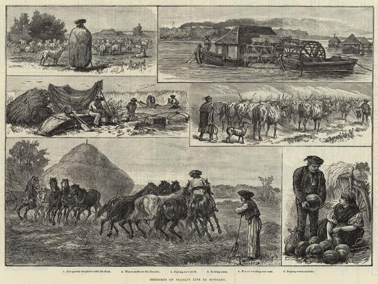 sketches-of-peasant-life-in-hungary