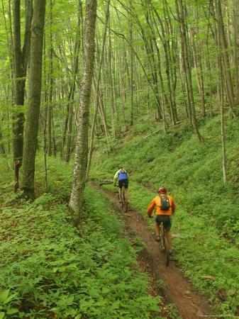 skip-brown-mountain-bikers-on-props-run-a-single-track-trail
