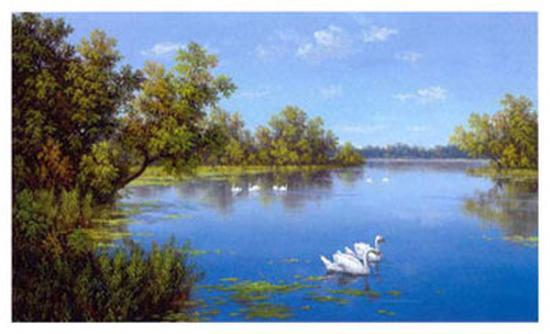 slava-river-with-swans-ii