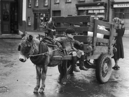 small-boy-waits-patiently-on-a-donkey-cart-in-the-market-place-at-kildare-co-kildare-ireland