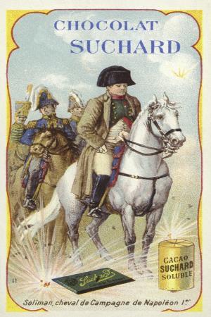 soliman-war-horse-of-napoleon