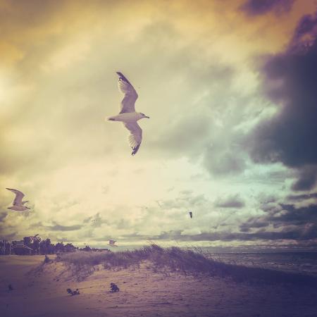 soupstock-stormy-day