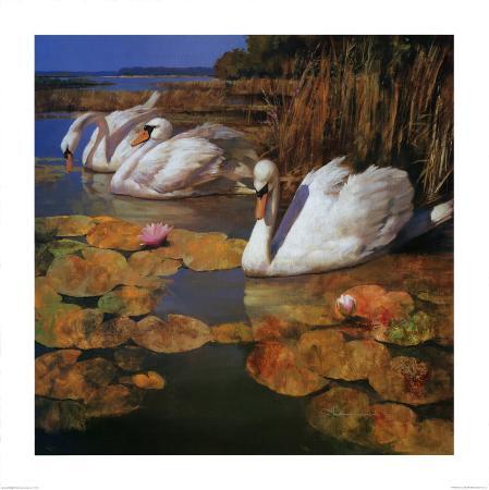 spartaco-lombardo-the-swans-family-ii