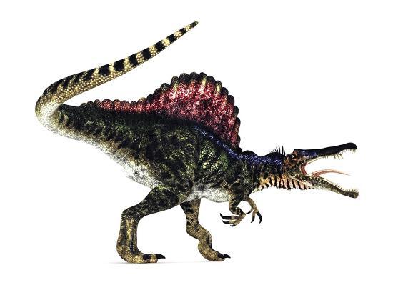 spinosaurus-dinosaur-artwork
