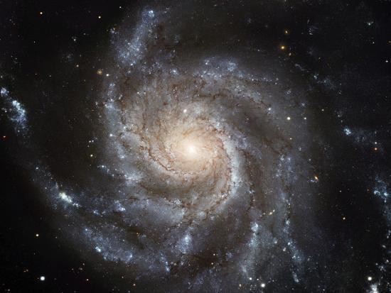 spiral-galaxy-m101