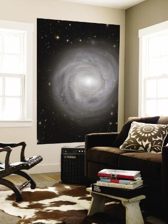 spiral-galaxy-ngc-4921