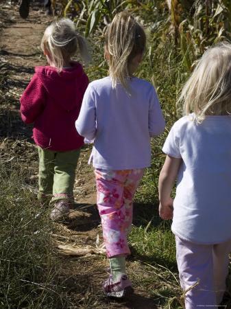 stacy-gold-siblings-walk-through-a-corn-maze