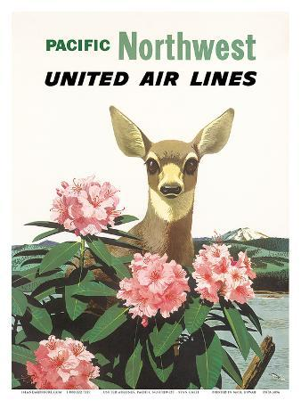 stan-galli-united-air-lines-pacific-northwest-c-1960s