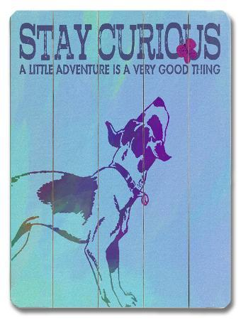 stay-curious
