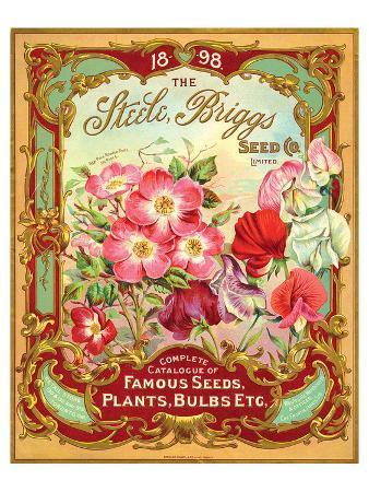 steele-briggs-seed-catalogue