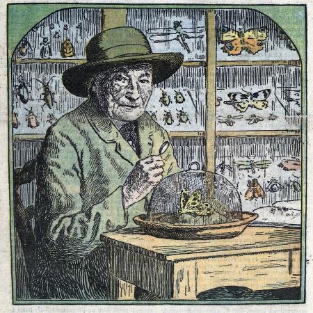 stefano-bianchetti-portrait-of-jean-henri-fabre-entomologist