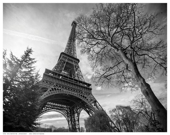 stephane-graciet-eiffel-tower-with-tree