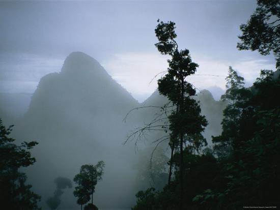 stephen-alvarez-peak-of-gunung-budda-through-early-morning-fog