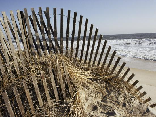 stephen-st-john-a-sand-fence-used-to-control-dune-erosion