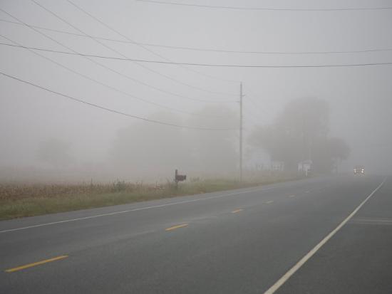 stephen-st-john-eastern-shore-early-morning-fog-blankets-the-road