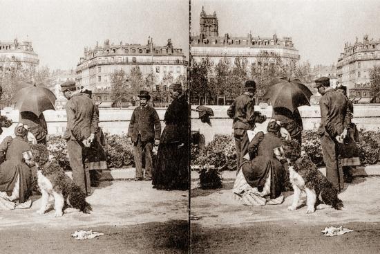 stereoscopic-view-of-a-flower-market-paris-1890