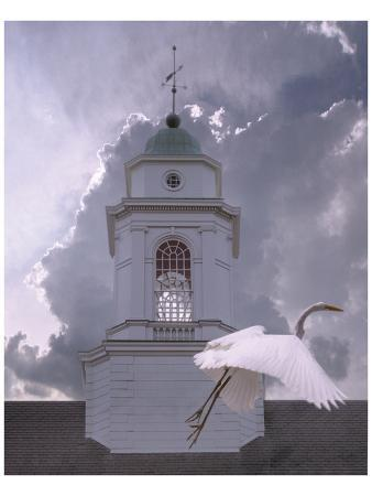 steve-hunziker-steeple-flyby