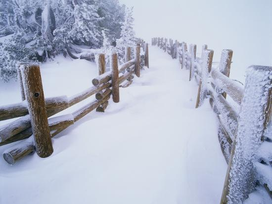 steve-terrill-snow-covered-path-in-crater-lake-national-park