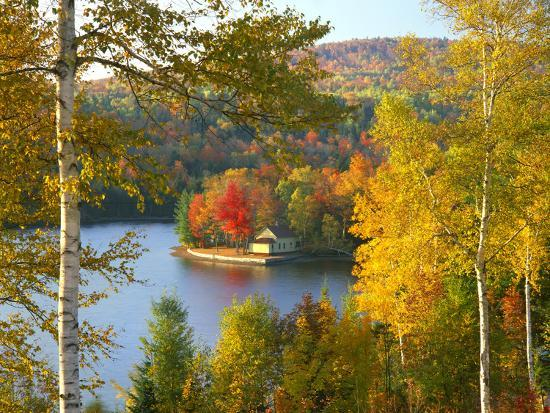 steve-terrill-summer-home-surrounded-by-fall-colors-wyman-lake-maine-usa