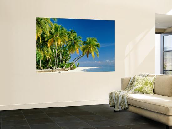 steve-vidler-palm-trees-and-tropical-beach-maldive-islands-indian-ocean