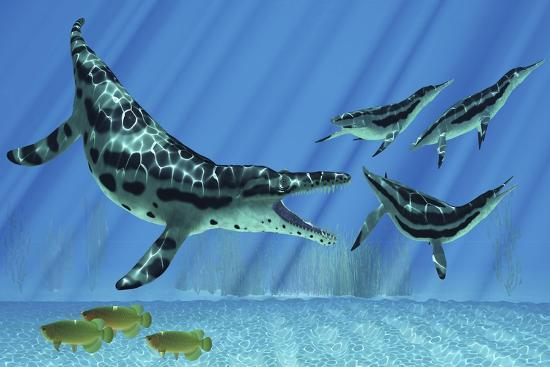 stocktrek-images-a-group-of-dolichorhynchops-try-to-escape-from-a-huge-kronosaurus