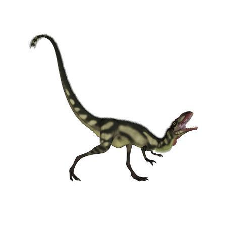 stocktrek-images-dilong-dinosaur-roaring