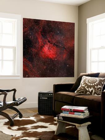 stocktrek-images-emission-nebula-ngc-6820