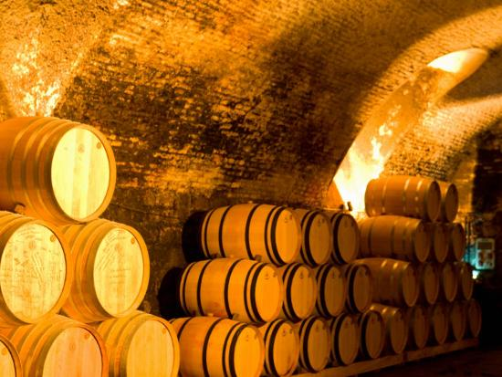 stuart-westmoreland-19th-century-wine-cellar-juanico-winery-uruguay