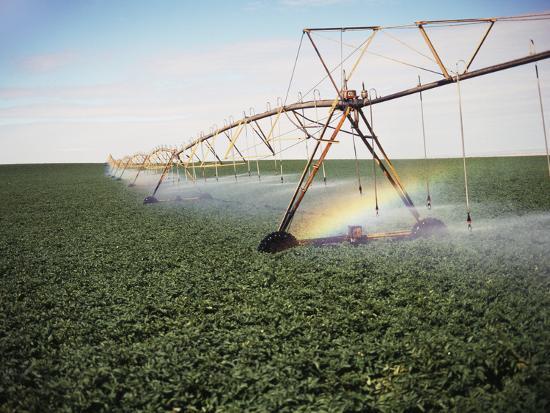 stuart-westmorland-sprinkler-system-in-field