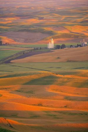 stuart-westmorland-summer-wheat-barley-and-lentil-fields-washington-palouse-area