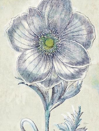 sue-schlabach-belle-fleur-ii-crop