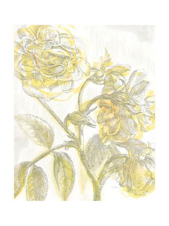 sue-schlabach-belle-fleur-yellow-i-crop