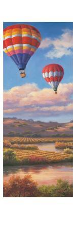 sung-kim-balloon-panel-i