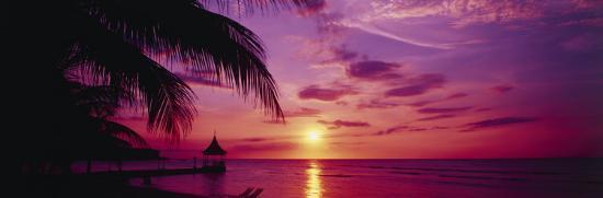 sunset-palm-trees-beach-water-ocean-montego-bay-jamaica
