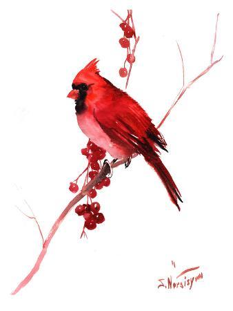 suren-nersisyan-red-cardinal-bird