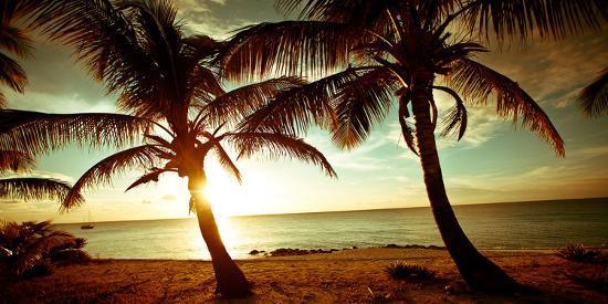 susan-bryant-bimini-sunset