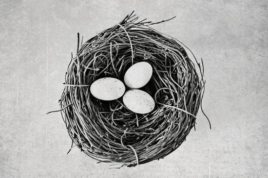 susannah-tucker-nest