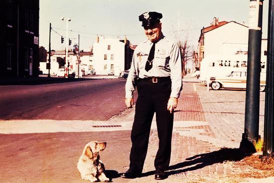 suzie-the-railroad-dog