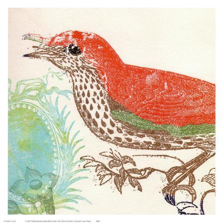 swan-papel-red-bird