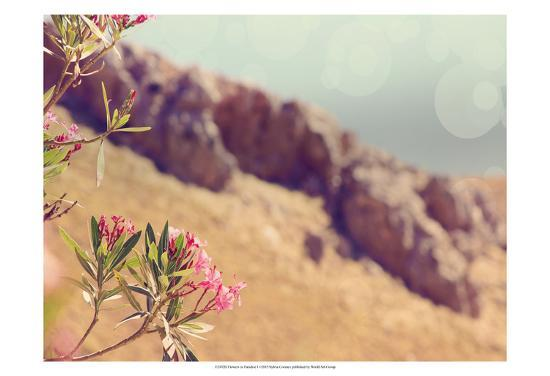 sylvia-coomes-flowers-in-paradise-i