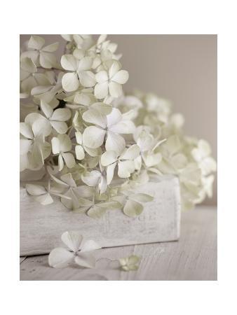 symposium-design-white-flowers