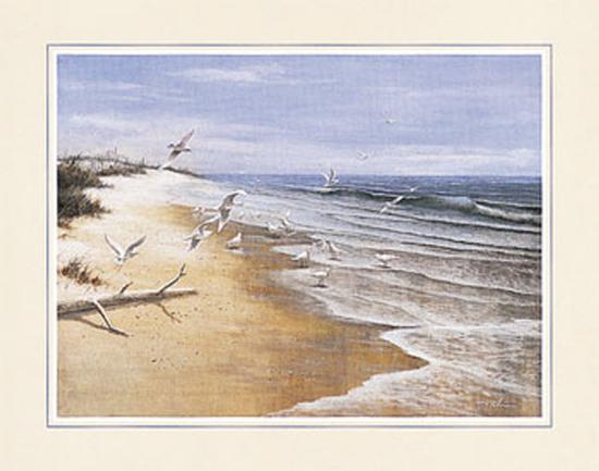 t-c-chiu-deserted-beach-with-seagulls