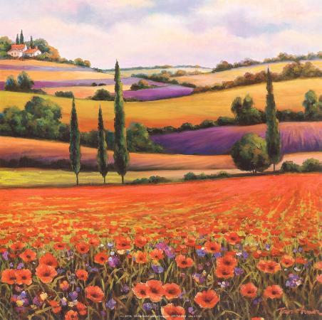 t-c-chiu-fields-of-poppies-i